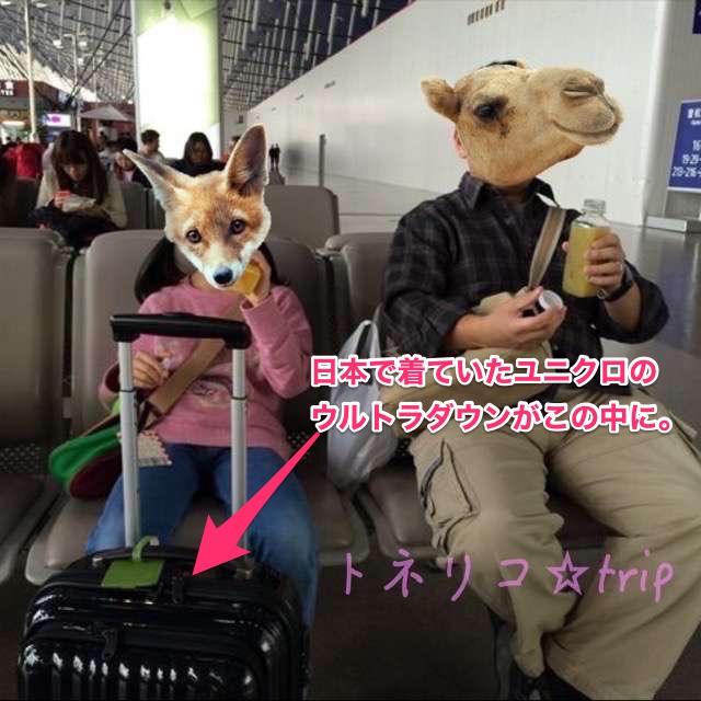 上海プードン浦東空港 乗り換えトランジット