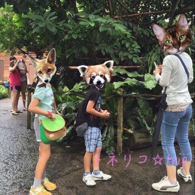 シンガポール動物園 タマリン
