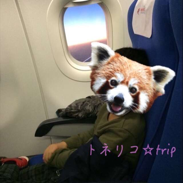 機内の様子 中国東方航空