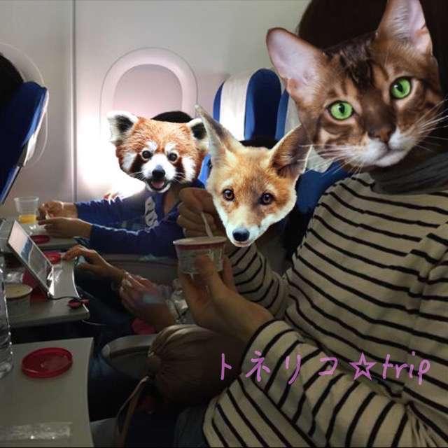中国東方航空機内の様子