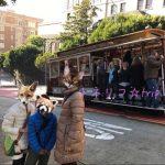 サンフランシスコ旅行の服装。写真で解説!パパママこども。