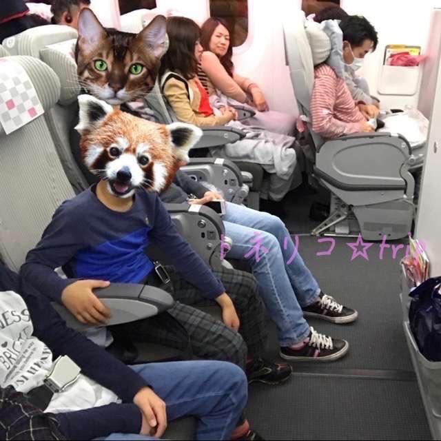 関空からサンフランシスコへ。機内の服装