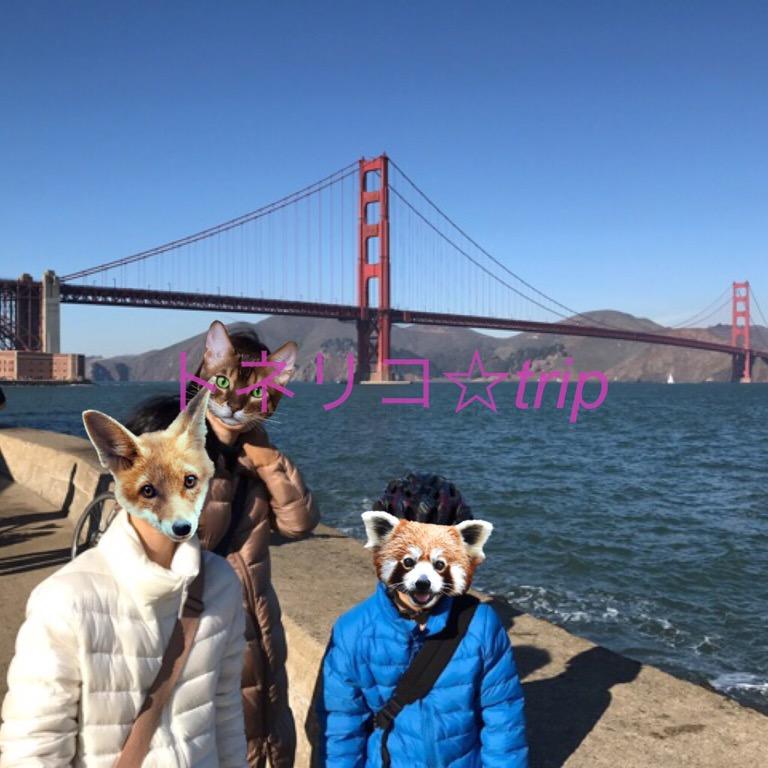 レンタル自転車でゴールデンゲートブリッジへGO!inサンフランシスコ