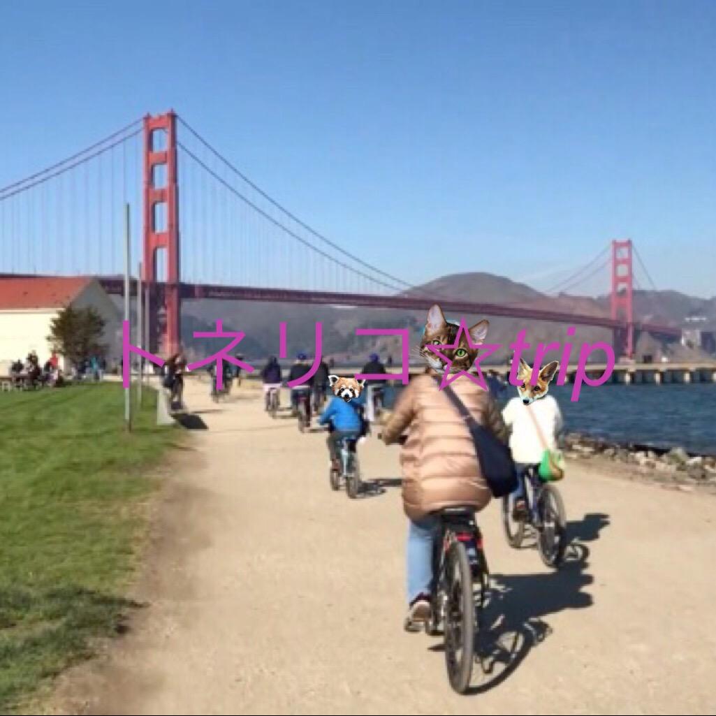 自転車でゴールデンゲートブリッジへ