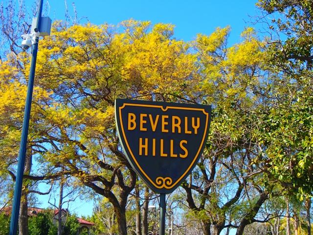 Beverlyhills001