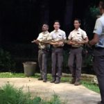 【シンガポール 家族旅行記#6】ナイトサファリのカワウソショーが可愛い