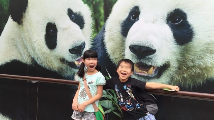 【シンガポール 家族旅行記#4】リバーサファリ実は楽しい