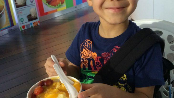 【シンガポール 家族旅行記#8】マンゴーアイスたっぷり丼