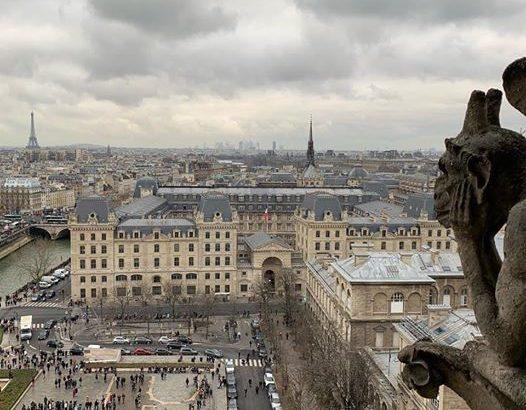 【パリ家族旅行術#33】それガーゴイルじゃないですよ!ノートルダム攻略